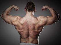 Man with muscular torso Stock Photo