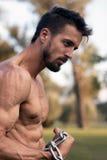 Man with muscular torso. Muscular Man Fitness Model Torso showing. Beard Man stock photography