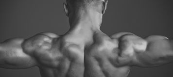 Man with muscular wet body and back. Coach sportsman showing biceps and triceps. Sport and workout. Athletic bodybuilder man on grey background. Dieting and stock images
