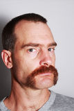 Man with mustache portrait. A man with a large mustache and gray t-shirt looks at the viewer royalty free stock images
