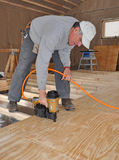 Man nailing plywood floor with nail gun. Man nailing plywood sub-floor in addition with nail gun stock photography