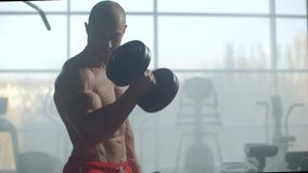 An athlete On the background of a window with a beautiful body lifts weights to train your biceps in the gym. Strength