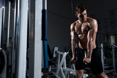 Man with a naked torso trains a triceps in the gym Royalty Free Stock Photography