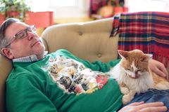 Free Man Napping On Couch With The Cat During The Holidays Royalty Free Stock Photos - 134074448