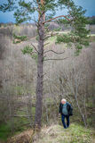 Man in nature alone Stock Photos