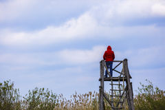 Man in nature Stock Images