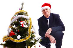 Man near x-mas tree. Businessman  sitting at Christmas tree on white Royalty Free Stock Photo