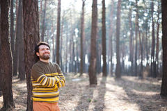 Man near the tree in a sunny forest Stock Photography