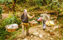 Man in Nepal  carrying a big heavy load on their shoulders Stock Image