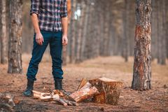 The man next to the wood chopped in the woods royalty free stock photography