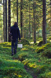 Man in Nordic forest Stock Image