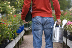 Man in nursery with watering can and plant, rear view Royalty Free Stock Image