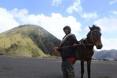 Man och häst Royaltyfri Bild