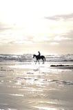 Man och hans häst på stranden Arkivbild