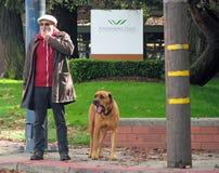 Man och hans hund som väntar för att korsa gatan Arkivbild