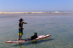Man och hund i brädet, portstephens, Australien Arkivfoto