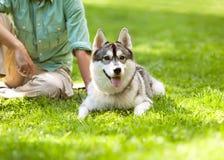 Man och hund i parkera Royaltyfri Fotografi