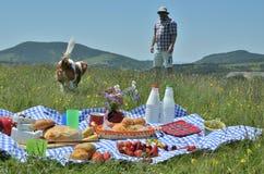 Man och hund på en picknick arkivbilder