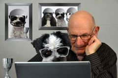 Man och hund som ser fotbollresultat i internet royaltyfri fotografi