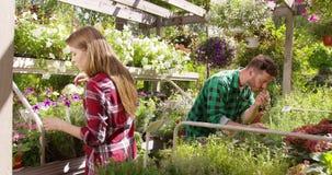Man och kvinna i trädgård stock video