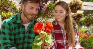 Man och kvinna som arbetar i blommande trädgård arkivfilmer