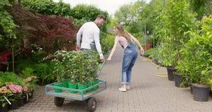 Man och kvinna som arbetar med växter lager videofilmer