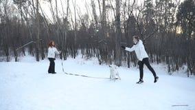 Man och kvinna som spelar med hunden stock video
