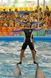 Man- och kvinnadanser överst av delfin på fjärden för Dolphine ` s i Phuket, Thailand Arkivbild