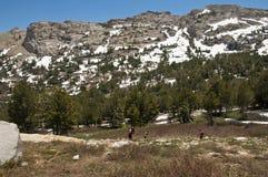 Man och pojkar som fotvandrar i bergen Royaltyfria Foton