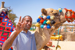 Man offering camel ride on the beach of Hurghada Stock Photo