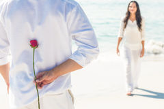 a man is offering a rose to his girlfriend Stock Photography