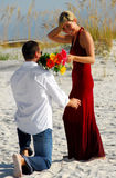 Man offering woman flowers Royalty Free Stock Image