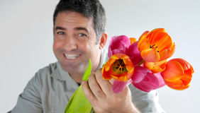 Man offers a bouquet of tulips flowers Royalty Free Stock Photography