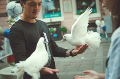 A man offers white doves to tourists for a photo shoot. royalty free stock photo