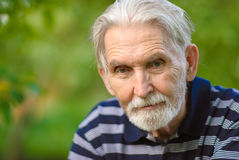 man old portrait Στοκ Εικόνες