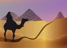 Man On A Camel In The Desert Stock Images