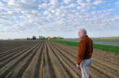 Man On A Field. Stock Photography