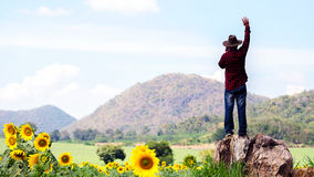The man open arms at sunflower garden in relaxing with green world. royalty free stock photo