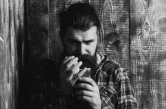 Man opening blue plastic cup. Man or brutal caucasian hipster with long beard and moustache in fashionable plaid jacket opening blue plastic cup on wooden royalty free stock images