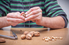 Man opening some walnuts on a table. Hands detail royalty free stock photos