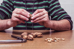 Man opening some walnuts on a table. Hands detail stock image