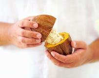 Man opens ripe cocoa pod in hands Stock Image