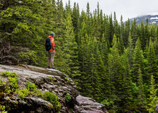 Man in Orange Coat Looks out over Pine Forest. In Montana mountains Royalty Free Stock Photos