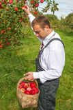 Man in orchard. Royalty Free Stock Photos