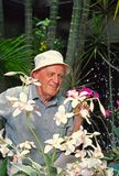 Man with Orchids. Man in garden tending his flowers royalty free stock photo