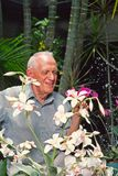 Man with orchids royalty free stock photos