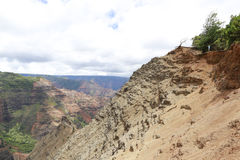 Man is overlooking Waimea Canyon, Hawaiian islands. Man is standing on the sandy steep of the Waimea Canyon and enjoying the picturesque landscape Royalty Free Stock Images