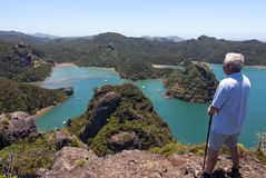 Man overlooking Whangaroa Harbour royalty free stock images