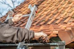 Man på avloppsrännor för ett hus för stege rengörande fotografering för bildbyråer