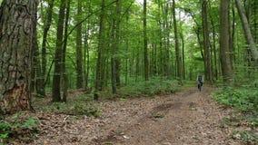 Man på bycicleritter förbi i skog stock video